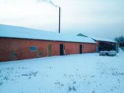 Продается завод по выращиванию грибов вешенка