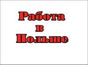 Работа в Польше-сбор грибов для женщин