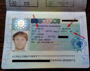 Виза в Польшу - робочая и шенгенская. Недорого! Робота у Польщі Чехії